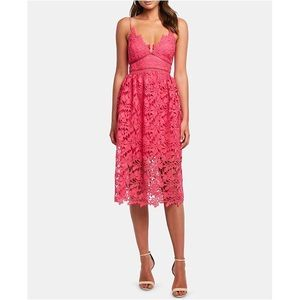 NWT Bardot Sonya lace fit and flare dress